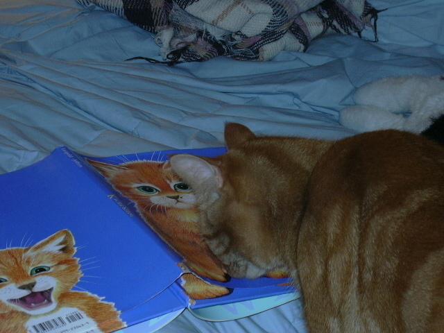 Cullen investigates the book